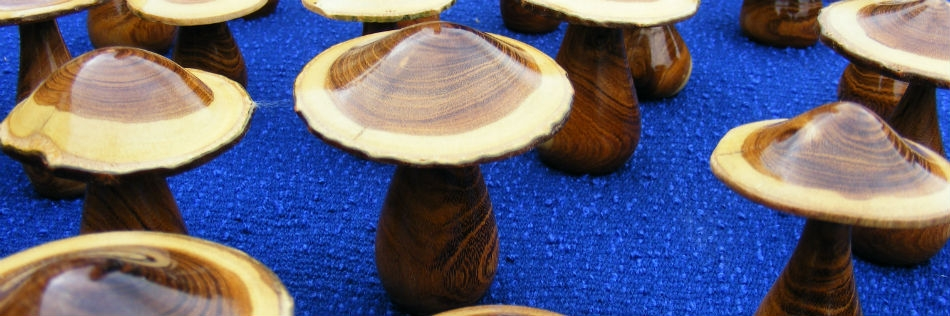 Laburnum mushrooms /toadstools  an ideal gift. Buy from the online shop.